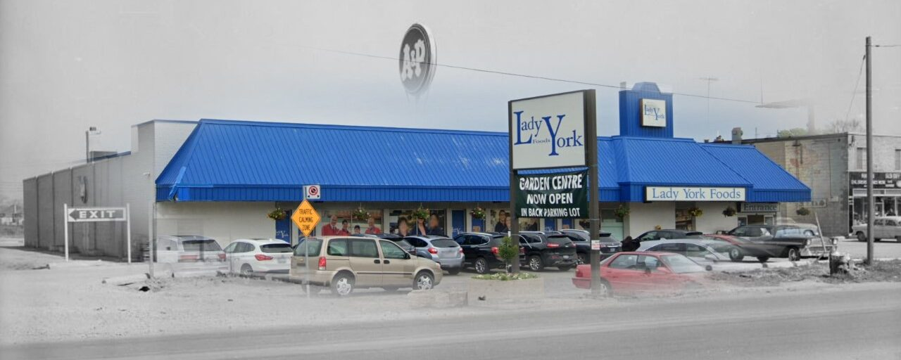 Lady York Foods has been a staple in the Dufferin-Lawrence area for over 60 years specializing in large selection of European food and fresh meats, cheeses and produce. Before Lady York occupied this space, an A